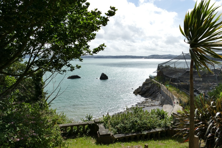 torquay-agatha-christie-mile-scenery-87